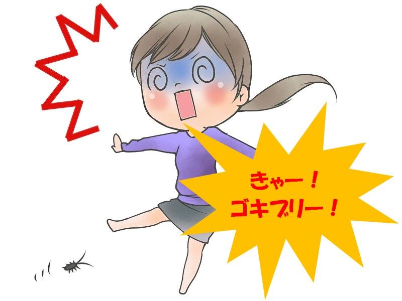 経路 ゴキブリ 侵入